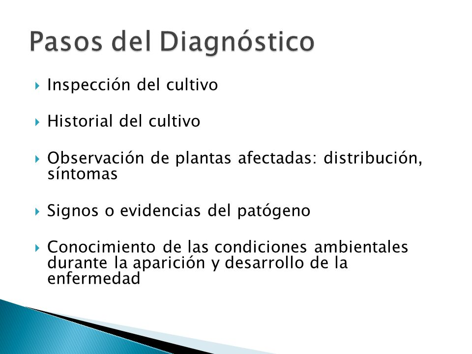 Pasos del Diagnóstico Inspección del cultivo Historial del cultivo