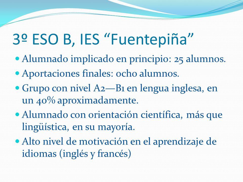 3º ESO B, IES Fuentepiña