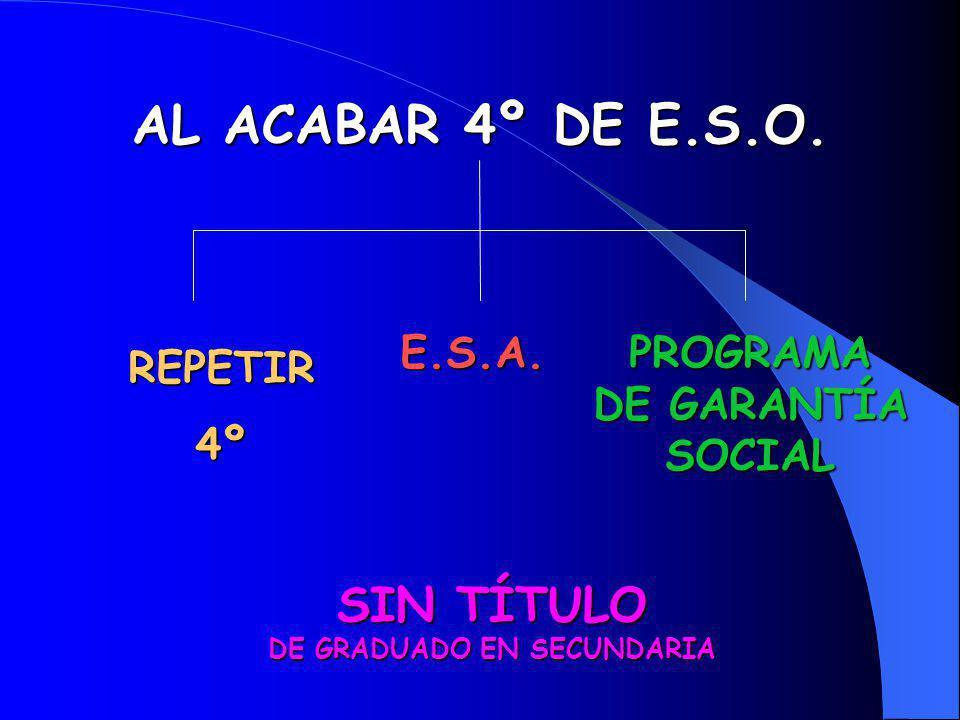 PROGRAMA DE GARANTÍA SOCIAL SIN TÍTULO DE GRADUADO EN SECUNDARIA