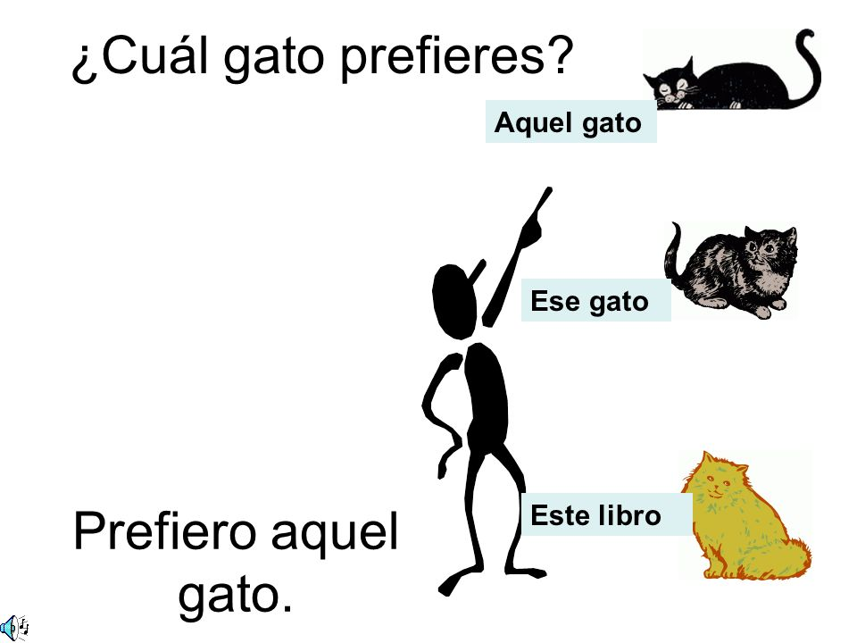 ¿Cuál gato prefieres Prefiero aquel gato. Aquel gato Ese gato