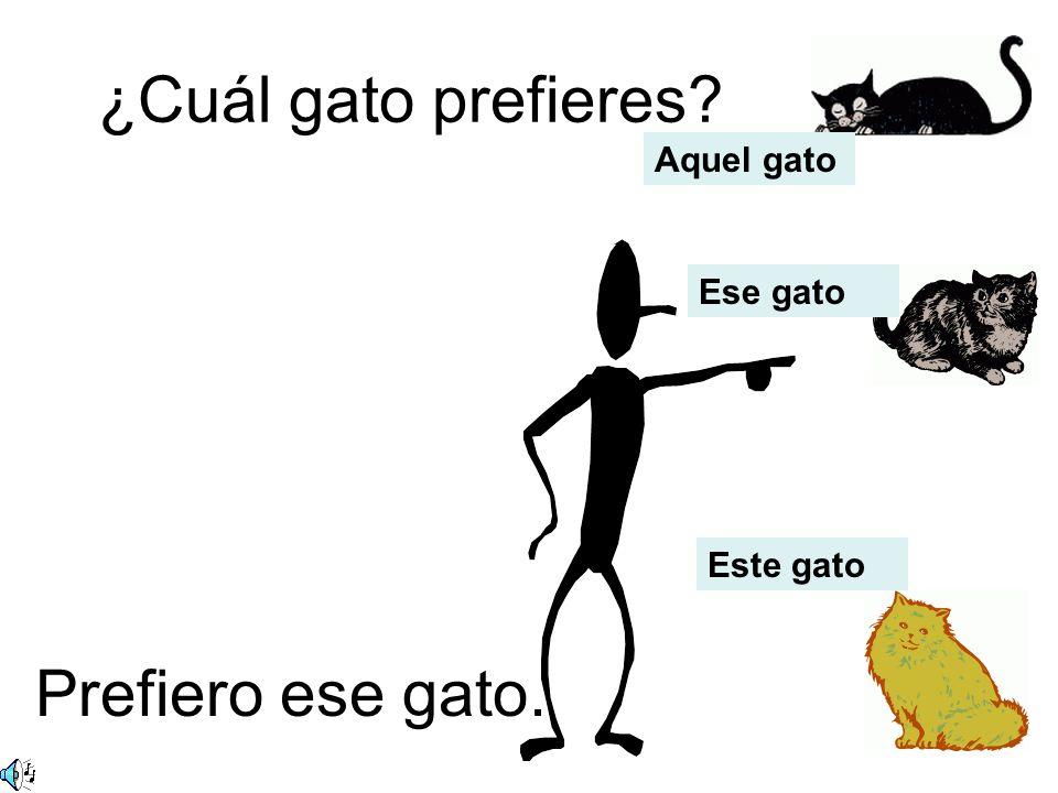 ¿Cuál gato prefieres Aquel gato Ese gato Este gato Prefiero ese gato.