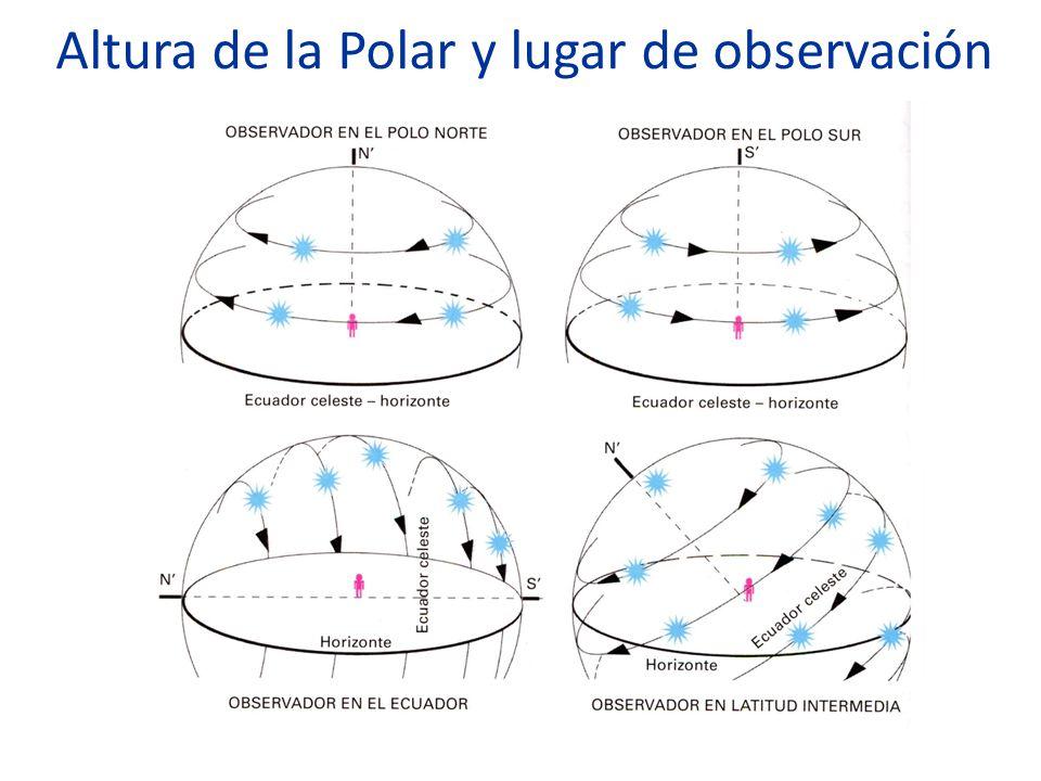 Altura de la Polar y lugar de observación