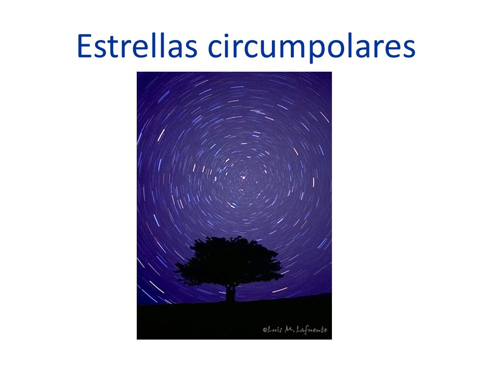 Estrellas circumpolares
