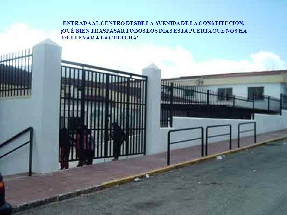 ENTRADA AL CENTRO DESDE LA AVENIDA DE LA CONSTITUCION.