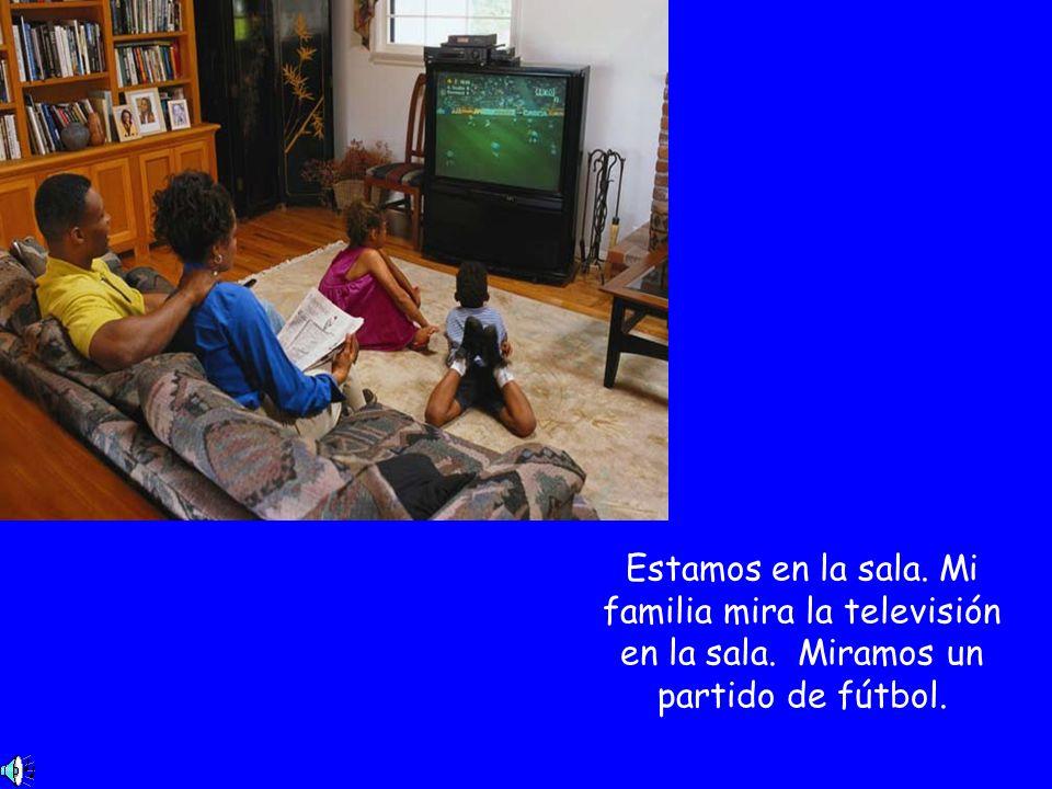 Estamos en la sala. Mi familia mira la televisión en la sala