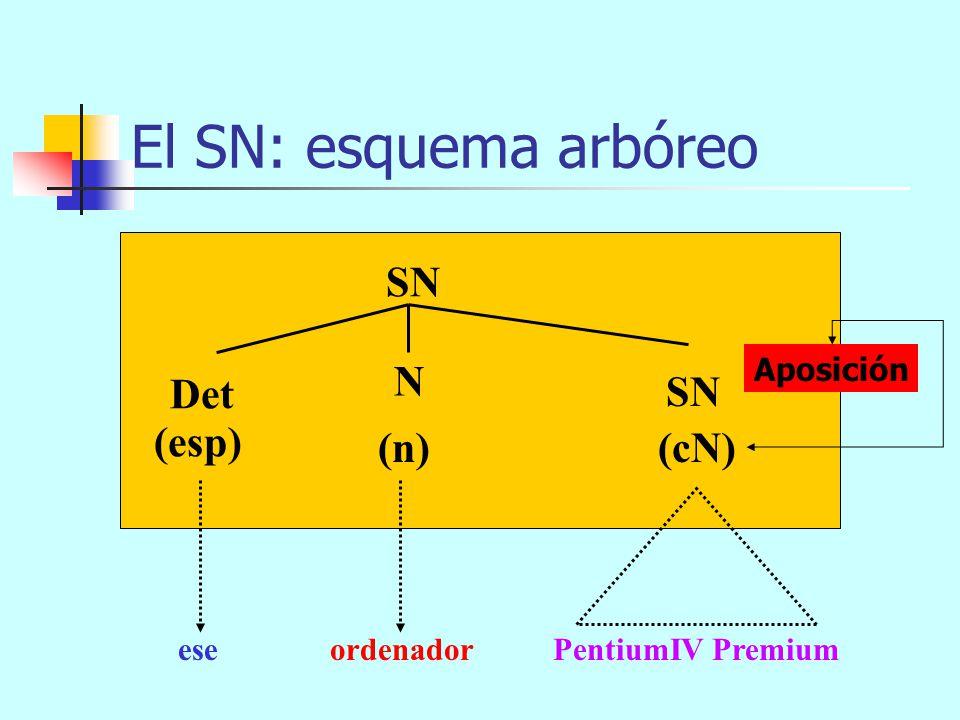 El SN: esquema arbóreo SN N Det SN (esp) (n) (cN) Aposición ese