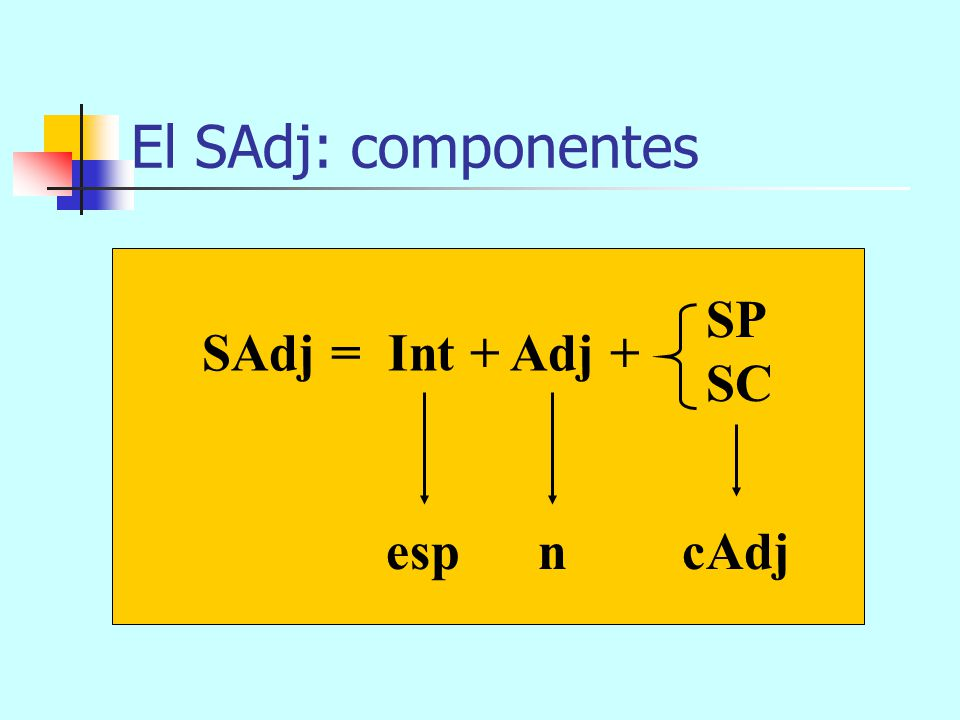 El SAdj: componentes SP SC SAdj = Int + Adj + esp n cAdj