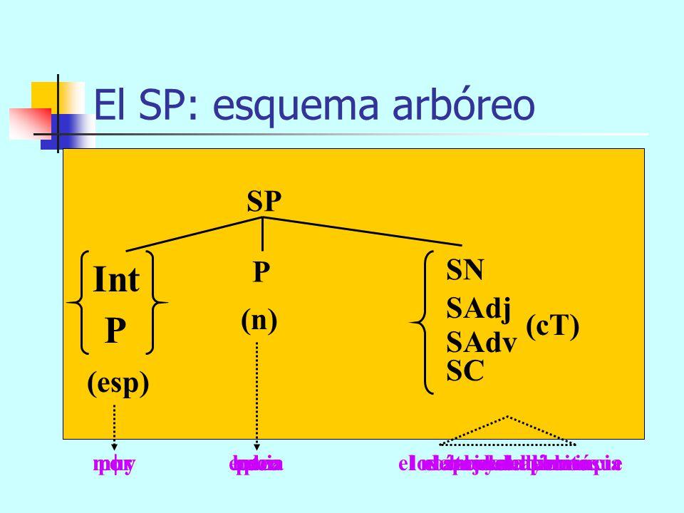 El SP: esquema arbóreo Int P SP SN P SAdj (n) (cT) SAdv SC (esp)