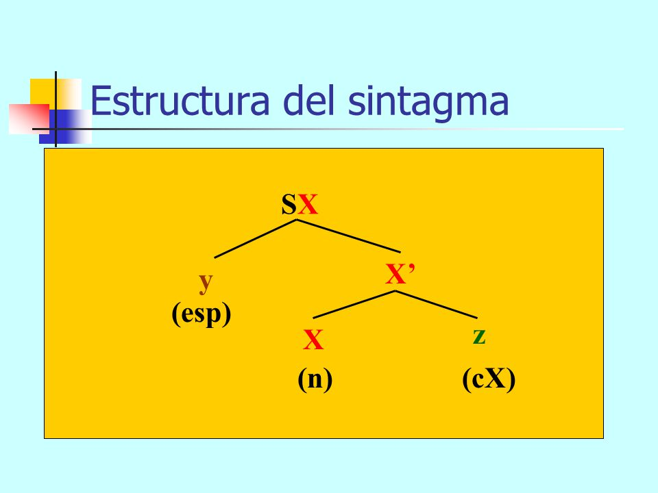 Estructura del sintagma