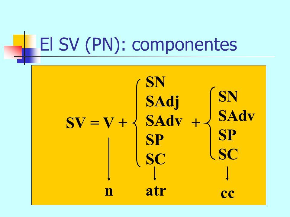 El SV (PN): componentes