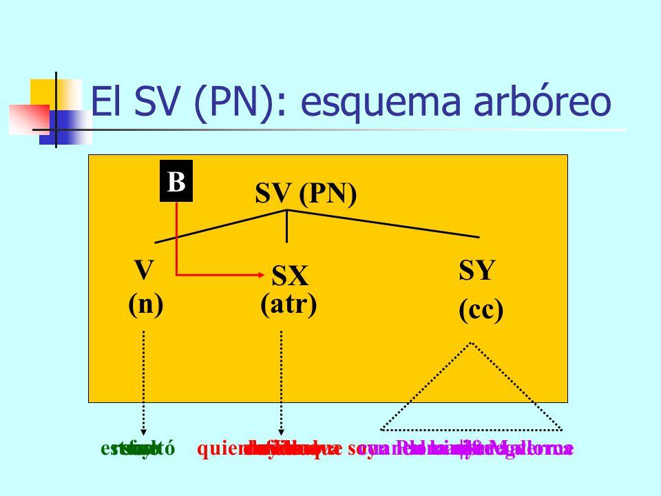 El SV (PN): esquema arbóreo