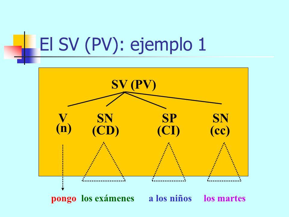 El SV (PV): ejemplo 1 SV (PV) V SN SP SN (n) (CD) (CI) (cc)