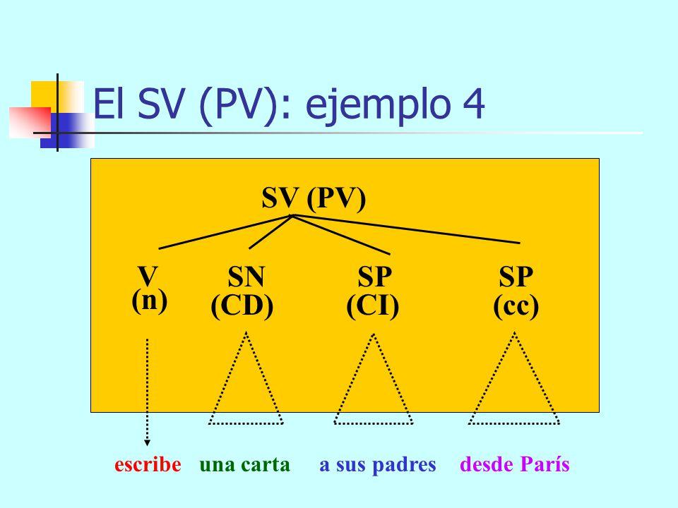 El SV (PV): ejemplo 4 SV (PV) V SN SP SP (n) (CD) (CI) (cc)