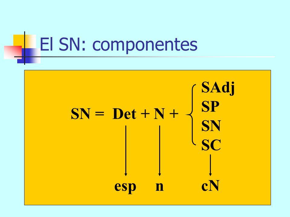 El SN: componentes SAdj SP SN SC SN = Det + N + esp n cN