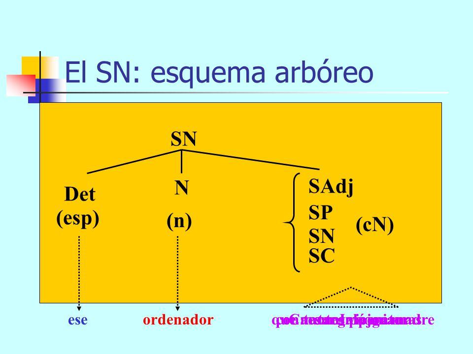 El SN: esquema arbóreo SN SAdj N Det SP (esp) (n) (cN) SN SC ese