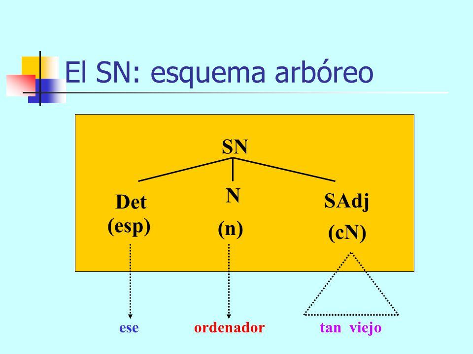 El SN: esquema arbóreo SN N Det SAdj (esp) (n) (cN) ese ordenador