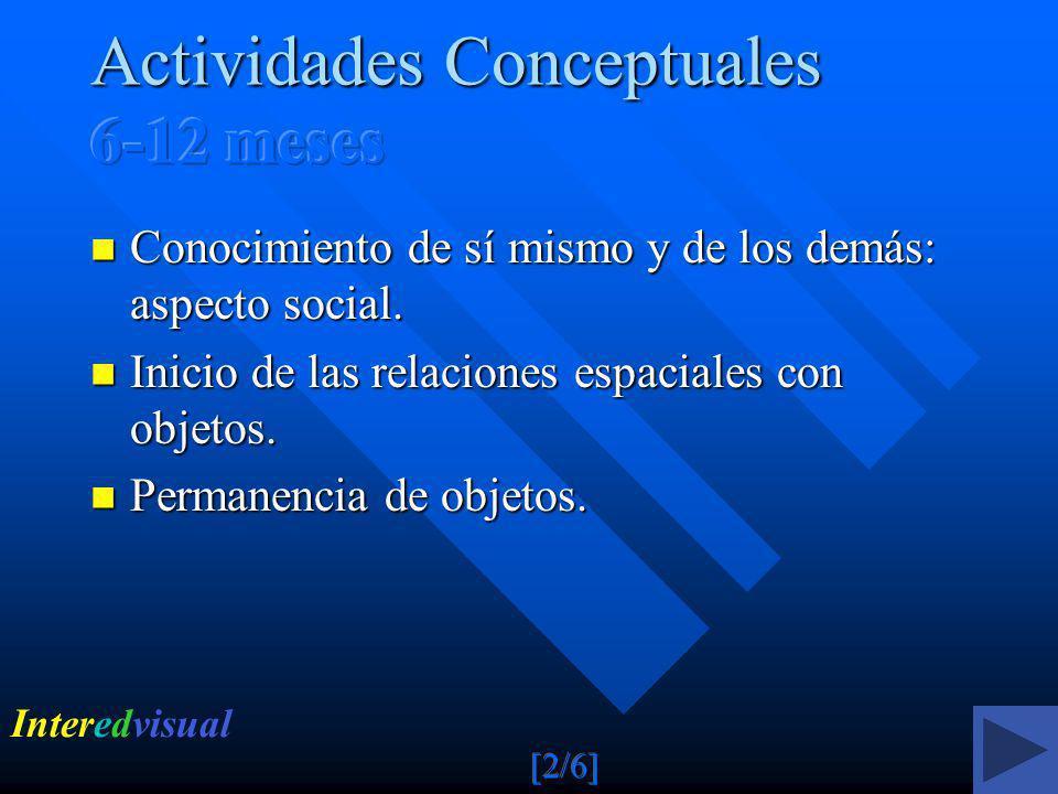 Actividades Conceptuales 6-12 meses