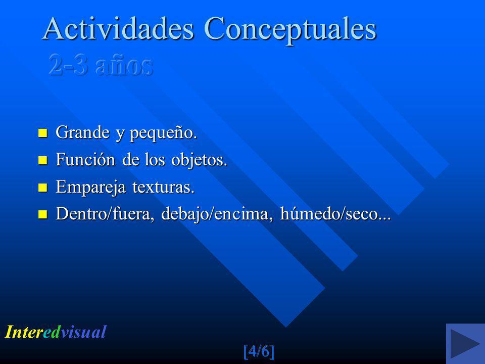 Actividades Conceptuales 2-3 años