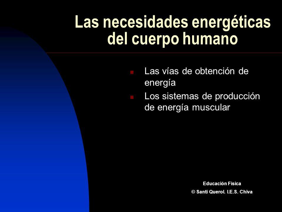 Las necesidades energéticas del cuerpo humano