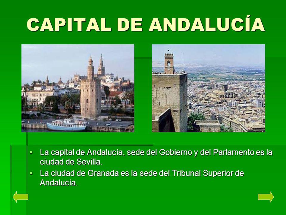 CAPITAL DE ANDALUCÍA La capital de Andalucía, sede del Gobierno y del Parlamento es la ciudad de Sevilla.