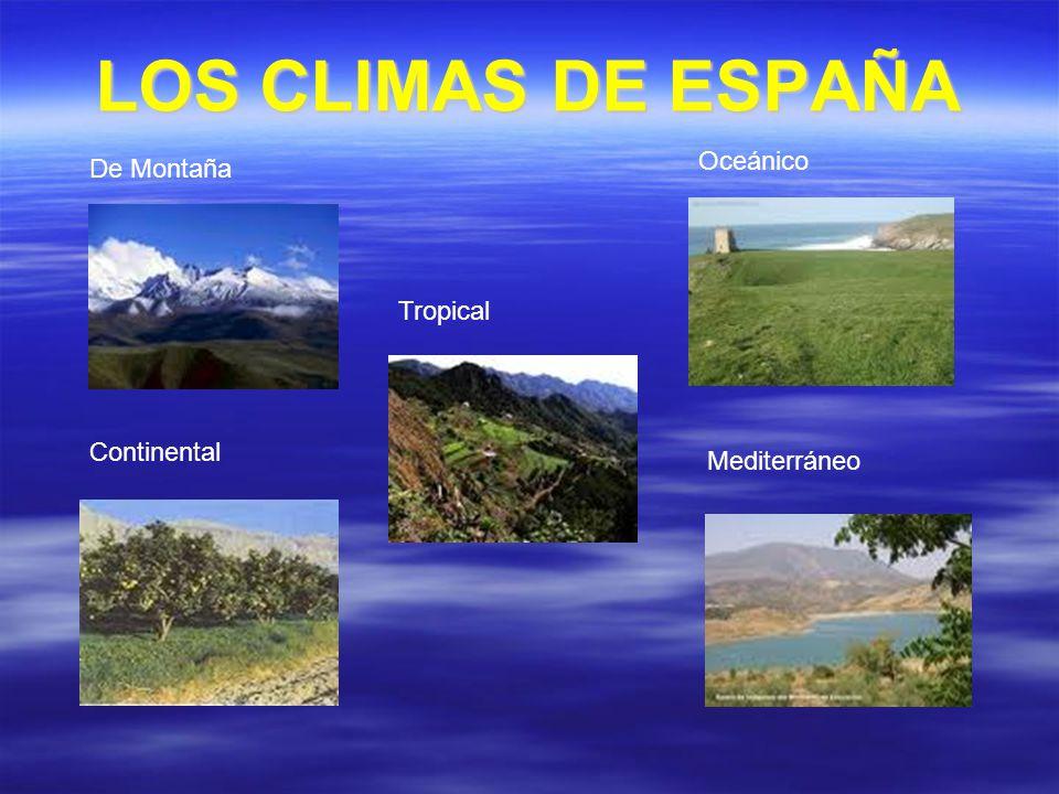 LOS CLIMAS DE ESPAÑA Oceánico De Montaña Tropical Continental