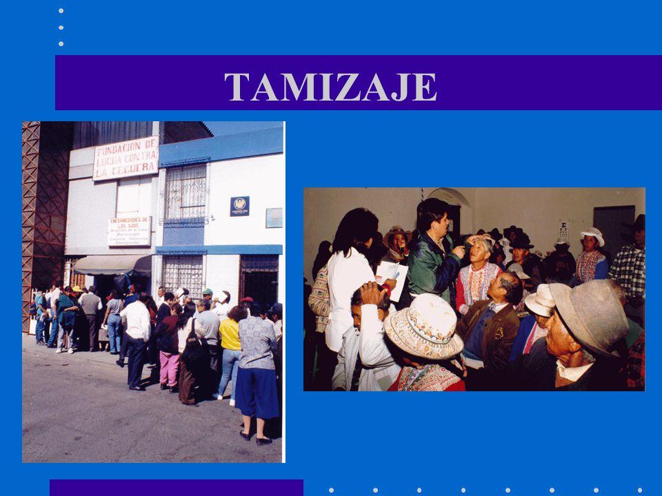 TAMIZAJE