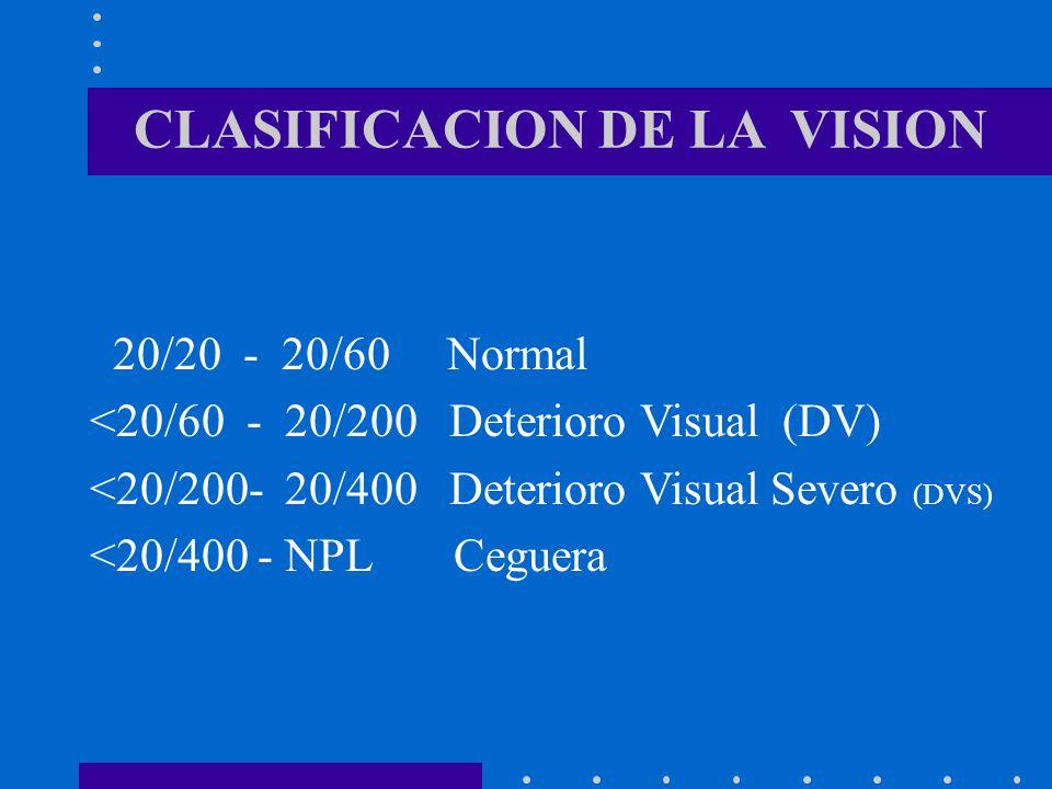 CLASIFICACION DE LA VISION