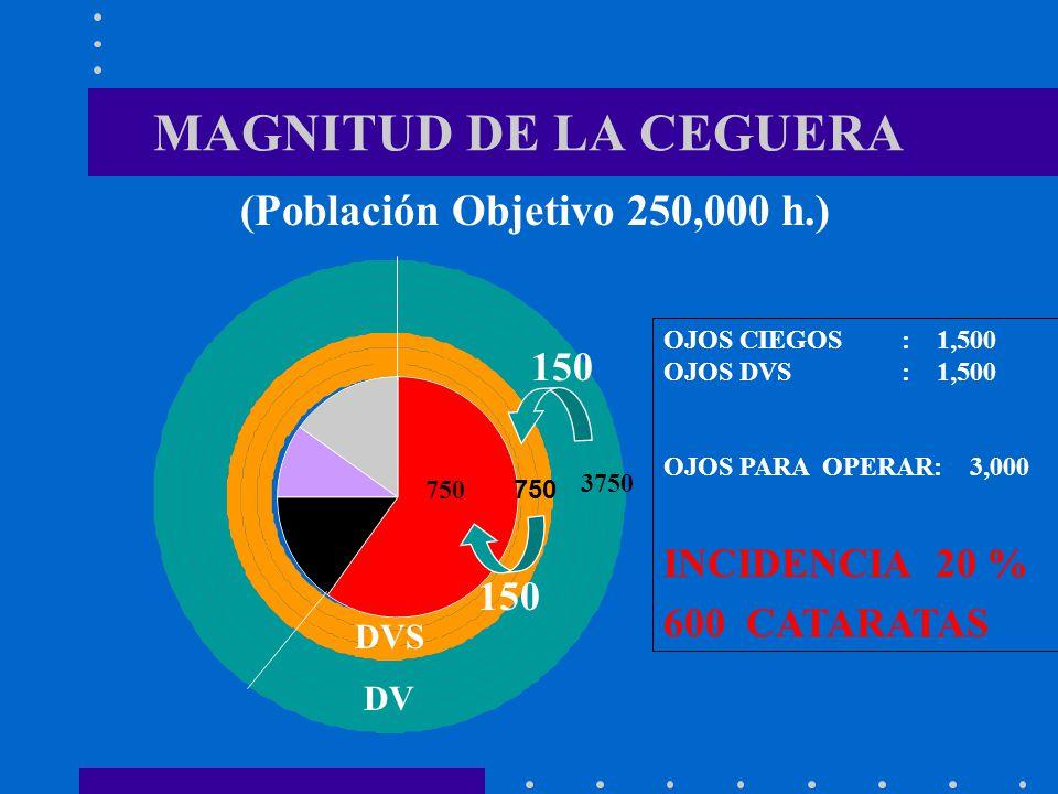 3750 MAGNITUD DE LA CEGUERA (Población Objetivo 250,000 h.) 150 150