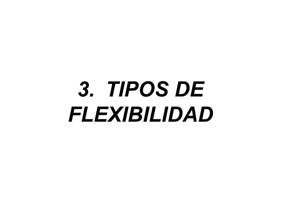 3. TIPOS DE FLEXIBILIDAD