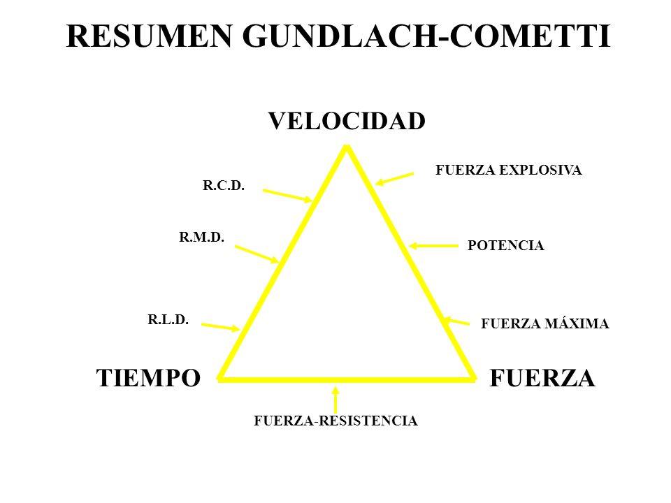 RESUMEN GUNDLACH-COMETTI