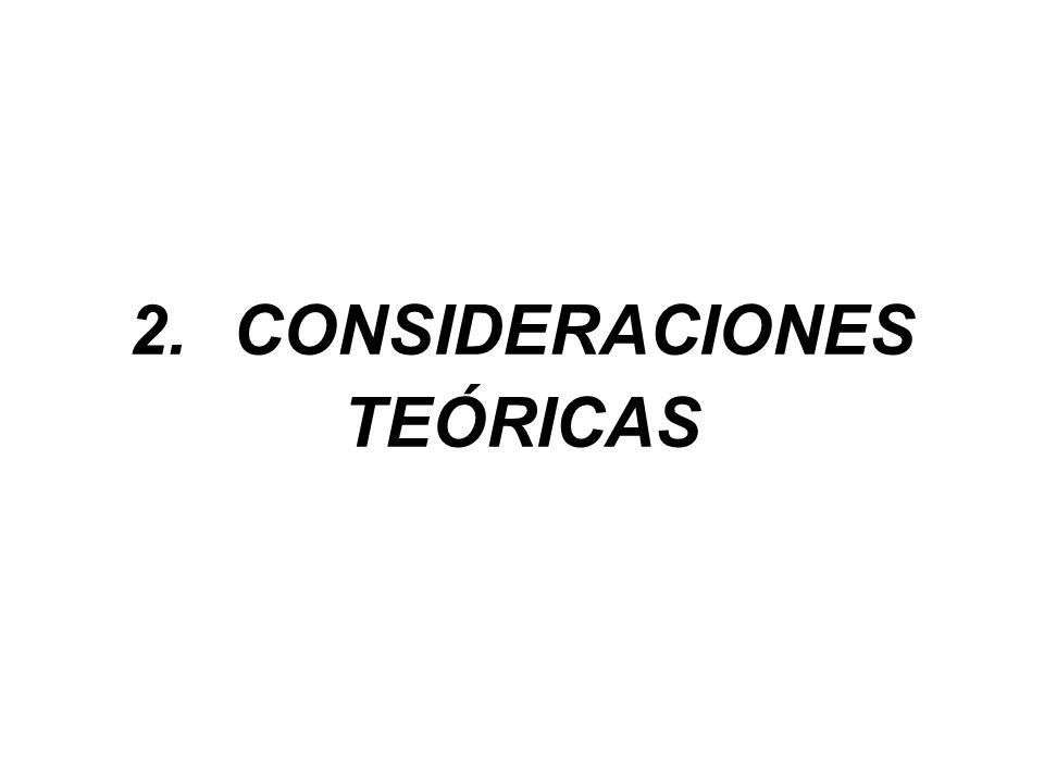 2. CONSIDERACIONES TEÓRICAS