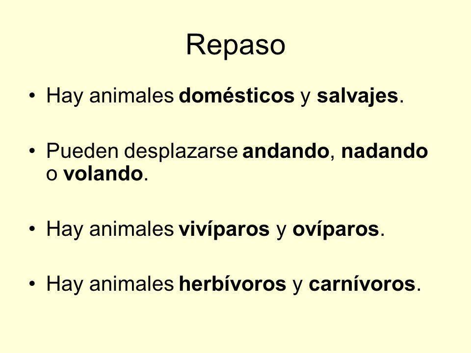 Repaso Hay animales domésticos y salvajes.