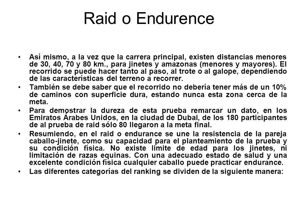Raid o Endurence