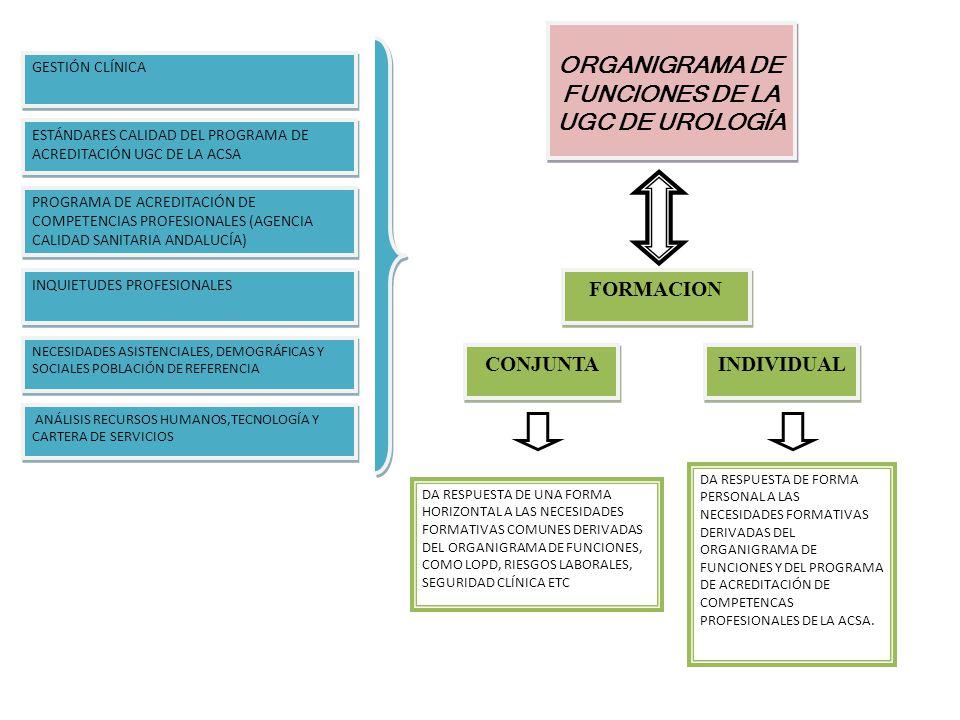 ORGANIGRAMA DE FUNCIONES DE LA UGC DE UROLOGÍA