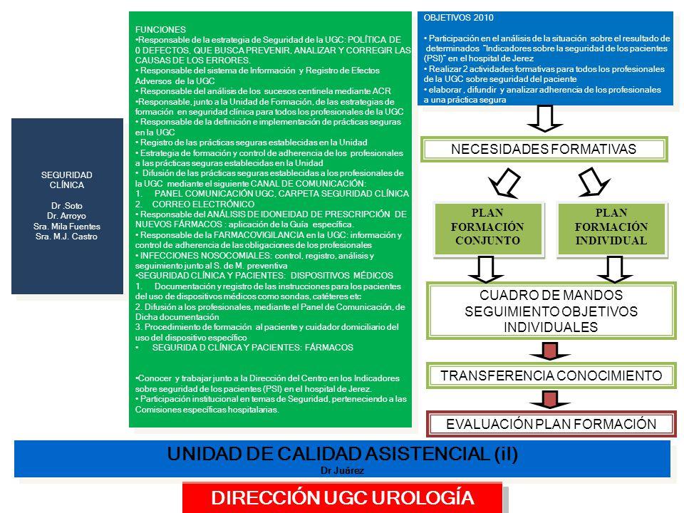 UNIDAD DE CALIDAD ASISTENCIAL (iI) DIRECCIÓN UGC UROLOGÍA