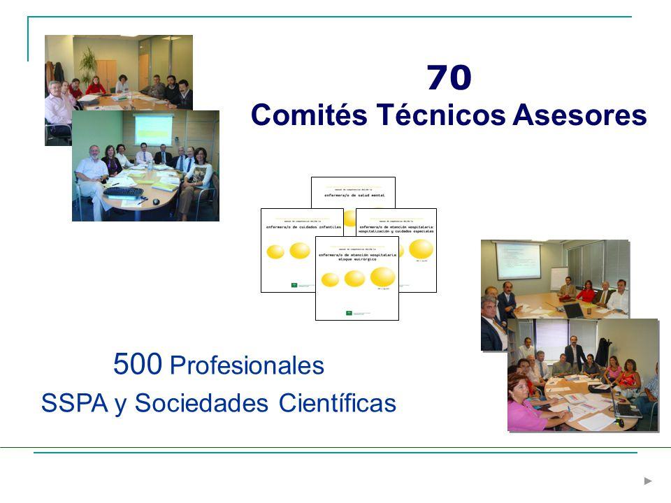 Comités Técnicos Asesores