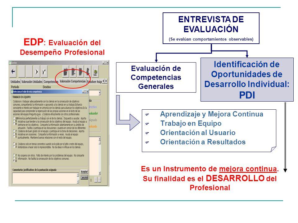 EDP: Evaluación del Desempeño Profesional PDI