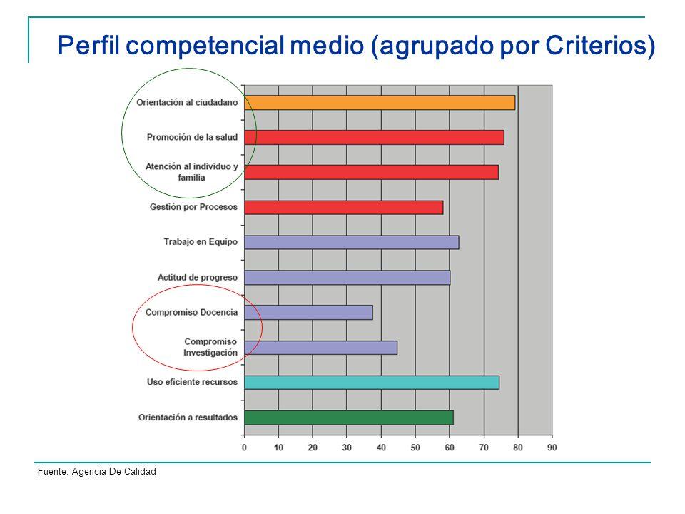 Perfil competencial medio (agrupado por Criterios)