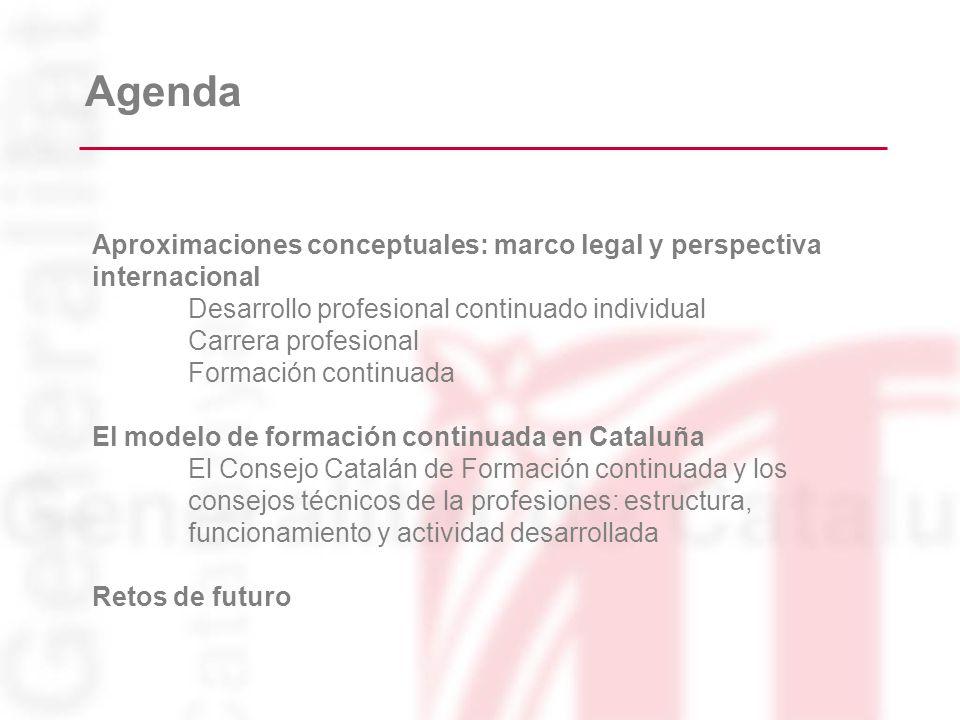 Agenda Aproximaciones conceptuales: marco legal y perspectiva internacional. Desarrollo profesional continuado individual.
