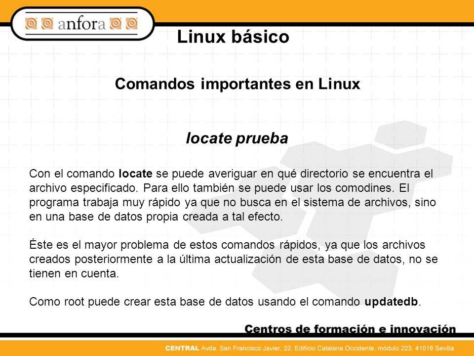 Comandos importantes en Linux