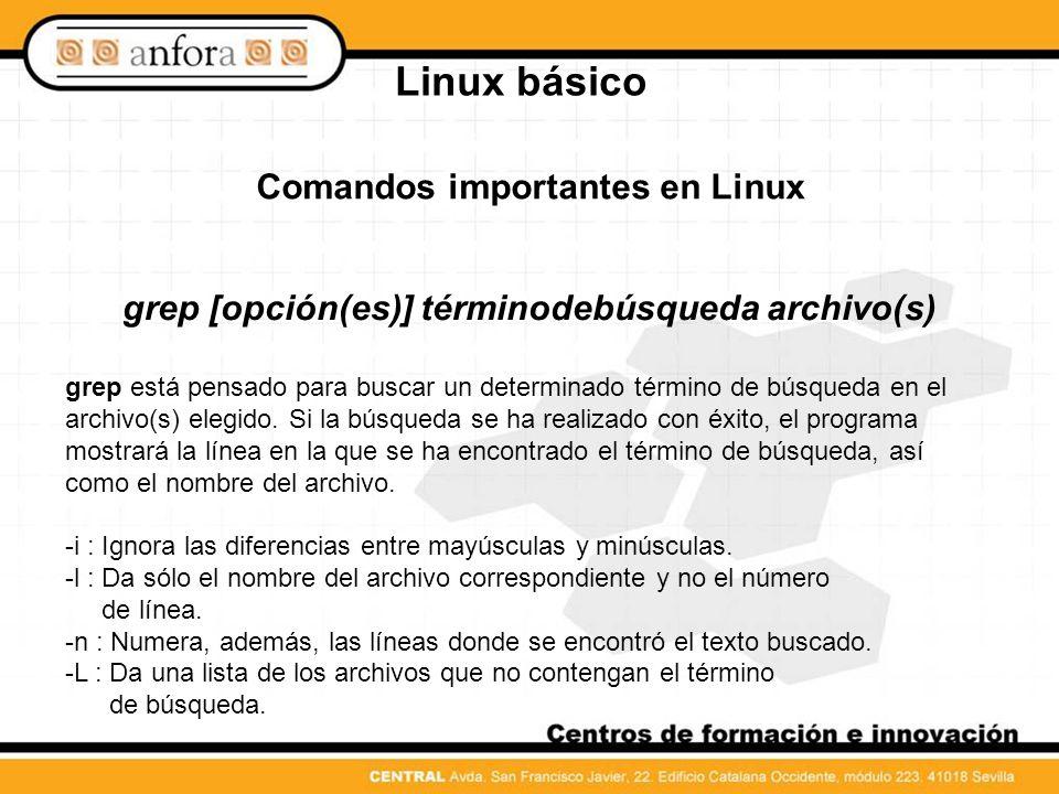 Linux básico Comandos importantes en Linux