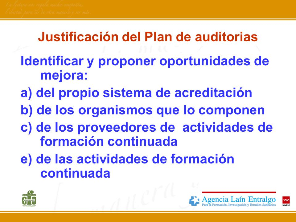 Justificación del Plan de auditorias