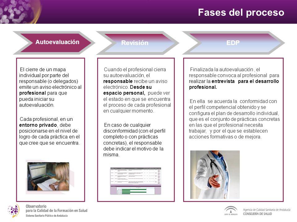 Fases del proceso Revisión Autoevaluación EDP