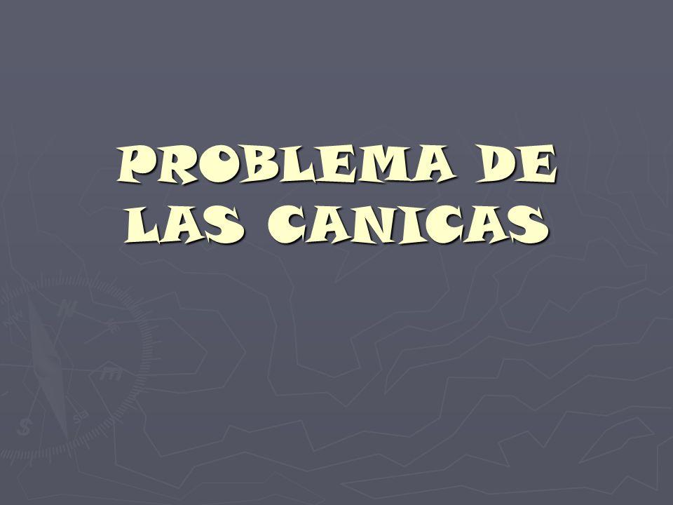 PROBLEMA DE LAS CANICAS