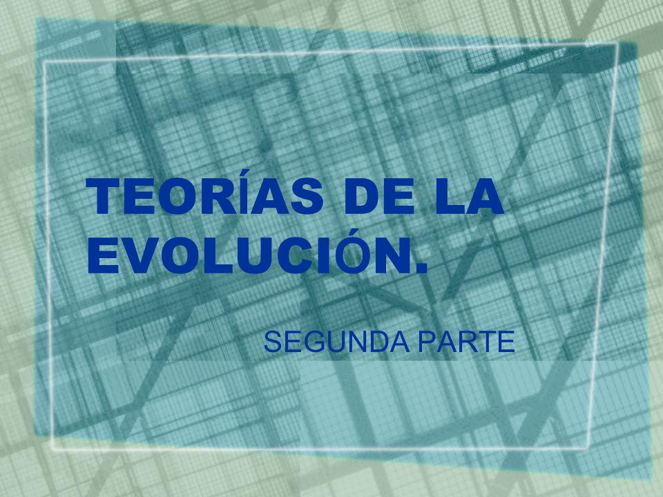 TEORÍAS DE LA EVOLUCIÓN.