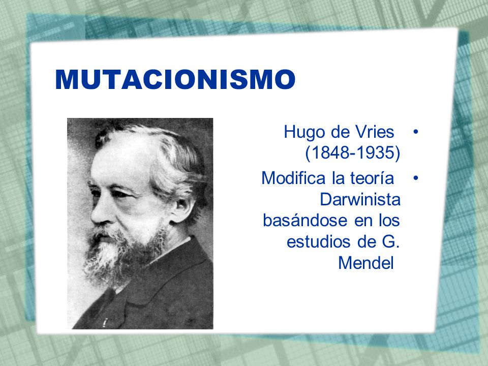 MUTACIONISMO Hugo de Vries (1848-1935)