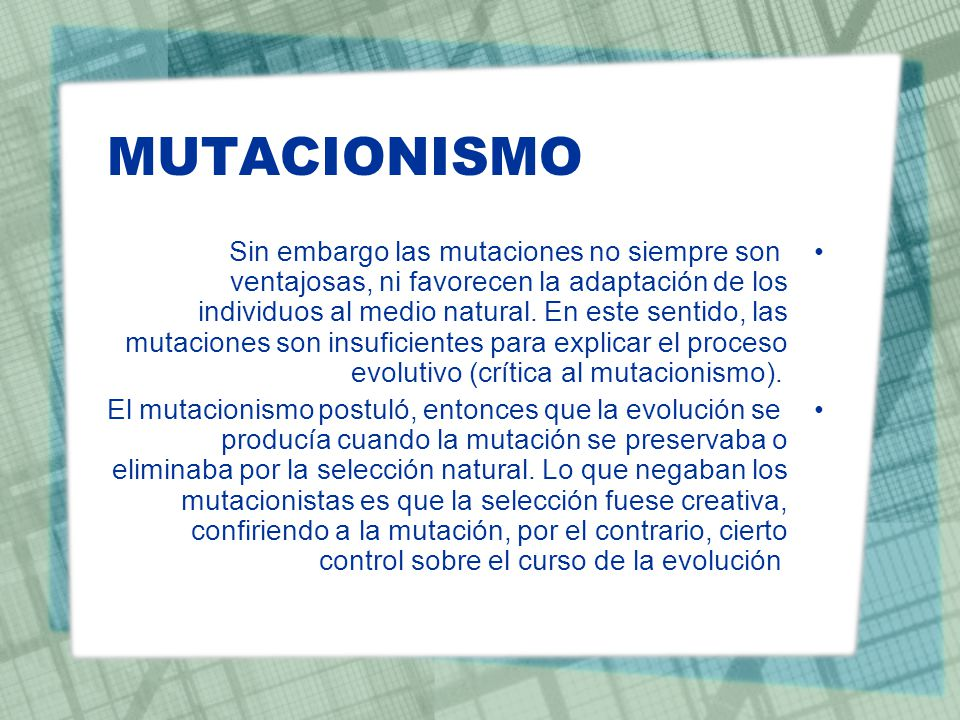 MUTACIONISMO