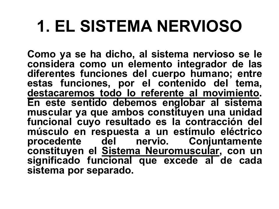 1. EL SISTEMA NERVIOSO