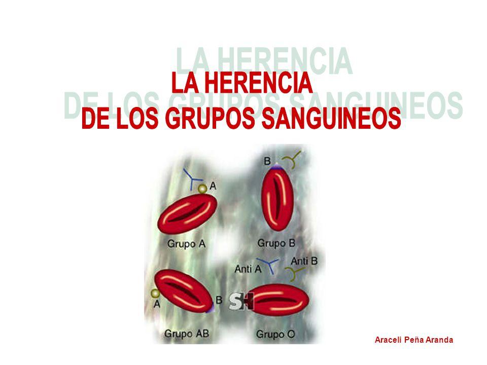 DE LOS GRUPOS SANGUINEOS