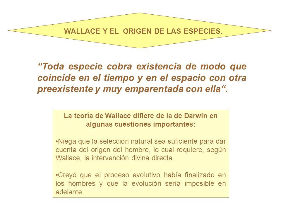 WALLACE Y EL ORIGEN DE LAS ESPECIES.
